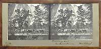 1 - Starting Out - Yo Semite
