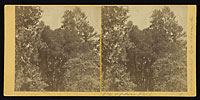 9 - The Upper Fall